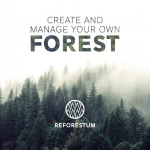 reforestum
